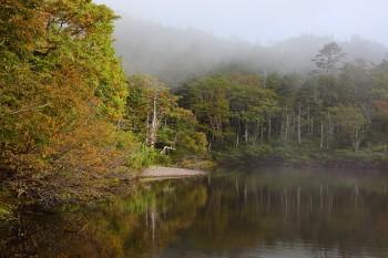 七ツ池の紅葉の様子(9月15日撮影) Photo by Kenji Shimadate