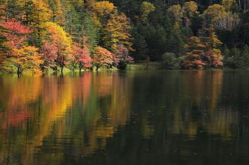 秋盛りの双子池(10月15日撮影) Photo by Kenji Shimadate