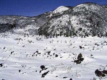 坪庭と北横岳