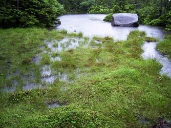 満水の七ッ池