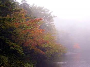 七ッ池畔の紅葉