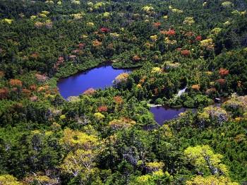 北横岳・北峰山頂付近から見下ろす七ッ池