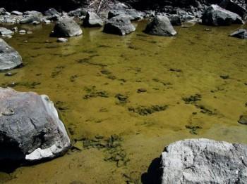 亀甲状構造土