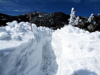 除雪の進む坪庭周遊路