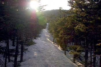 ヒュッテ付近の登山道