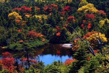 大岳稜線から望む七ツ池・9月24日撮影