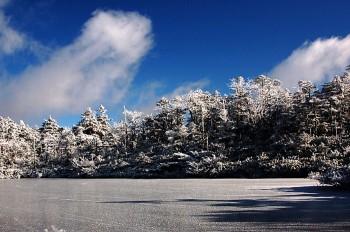 七ツ池結氷