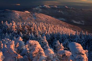 夕暮れの樹氷と八ヶ岳