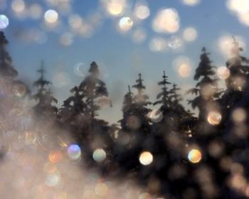 凍てつくガラス