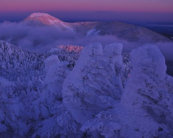 樹氷と明けゆく蓼科山