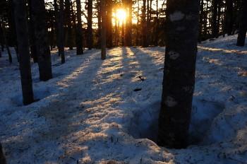 林内で迎える朝陽
