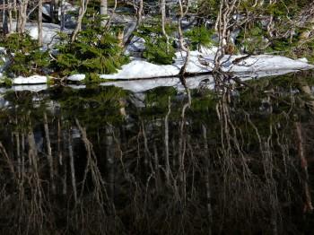 雪解の七ツ池