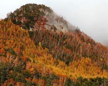 秋の鳴神山