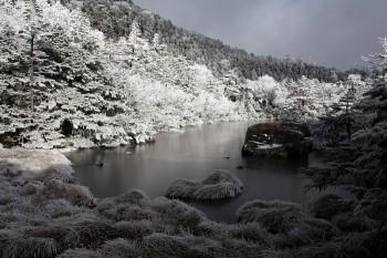 凍てつく七ツ池