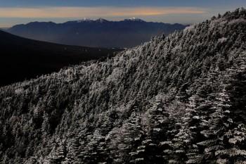 月夜の霧氷林と南アルプス(11月2日撮影)