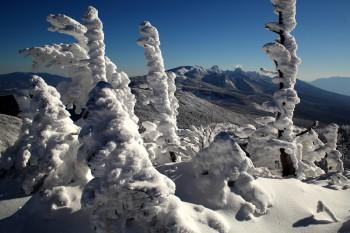 樹氷と八ヶ岳(12月13日撮影)