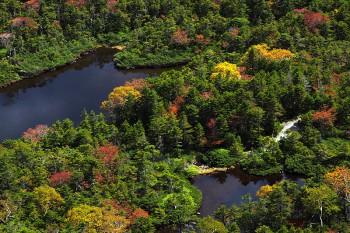 七ツ池俯瞰(9月30日撮影) Photo by Kenji Shimadate
