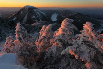 残照の樹氷(2月5日撮影) Photo by Kenji Shimadate
