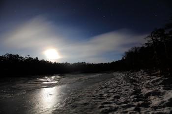 月夜の七ツ池(5月17日撮影) Photo by Kenji Shimadate