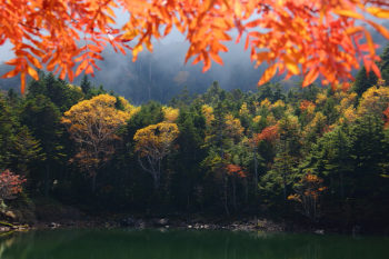 双子池雌池(10月13日撮影) Photo by Kenji Shimadate