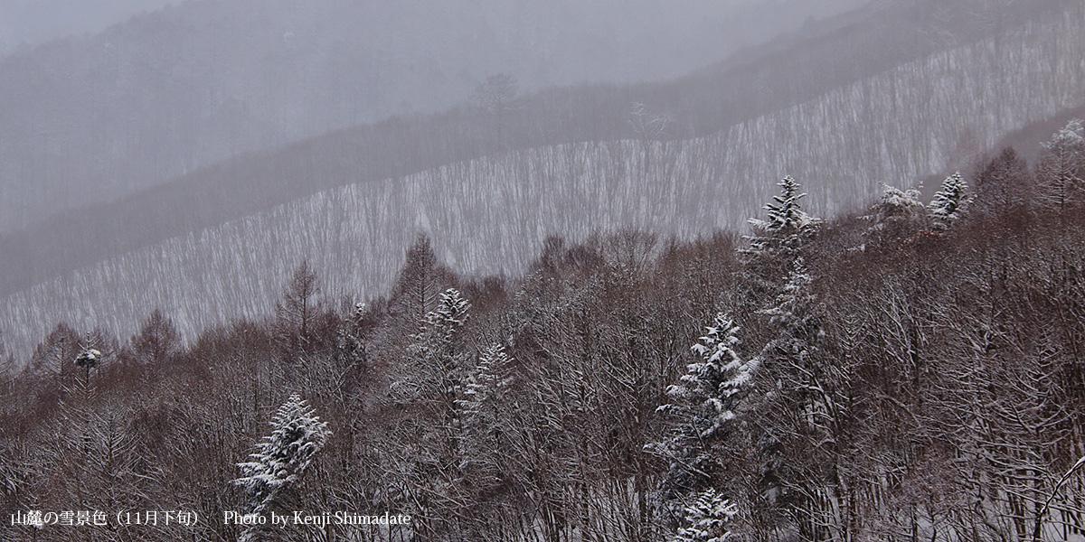 山麓の雪景色