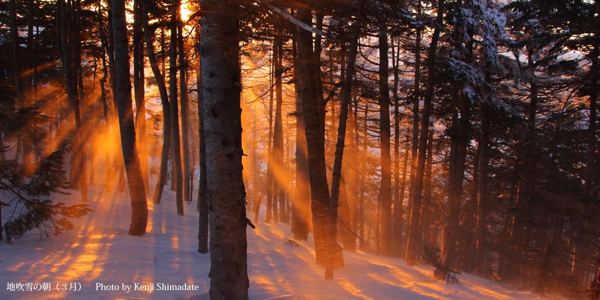 地吹雪の朝(3月)