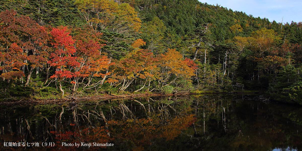 紅葉始まる七ツ池(9月)