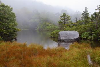 草紅葉始まる七ツ池(9月8日撮影) Photo by Kenji Shimadate