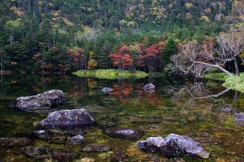 亀甲池(10月4日撮影) Photo by Kenji Shimadate
