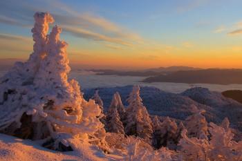 冬の幕開け(11月29日撮影) Photo by Kenji Shimadate