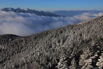 新雪の森と南八ツと南アルプス(5月7日撮影) Photo by Kenji Shimadate