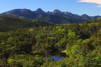 七ツ池と八ヶ岳 Photo by Kenji Shimadate