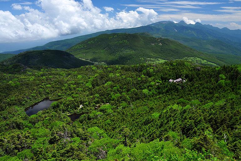 八ヶ岳と七ツ池(7月) Photo by Kenji Shimadate