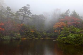 雨霧の七ツ池(9月29日撮影) Photo by Kenji Shimadate