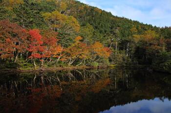 紅葉始まる七ツ池(9月29日撮影) Photo by Kenji Shimadate