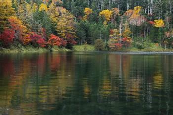 双子池雄池(10月11日撮影) Photo by Kenji Shimadate