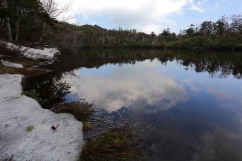 雪消の七ツ池(5月22日撮影) Photo by Kenji Shimadate