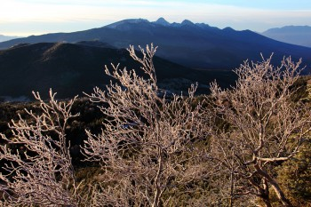 霧氷と八ヶ岳(11月4日撮影) Photo by Kenji Shimadate