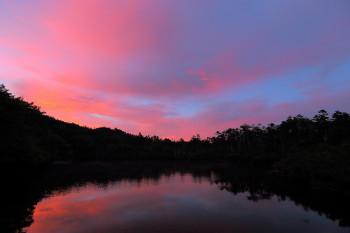 七ツ池の夕暮れ(7月27日撮影) Photo by Kenji Shimadate