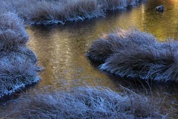 凍てつく朝 Photo by Kenji Shimadate