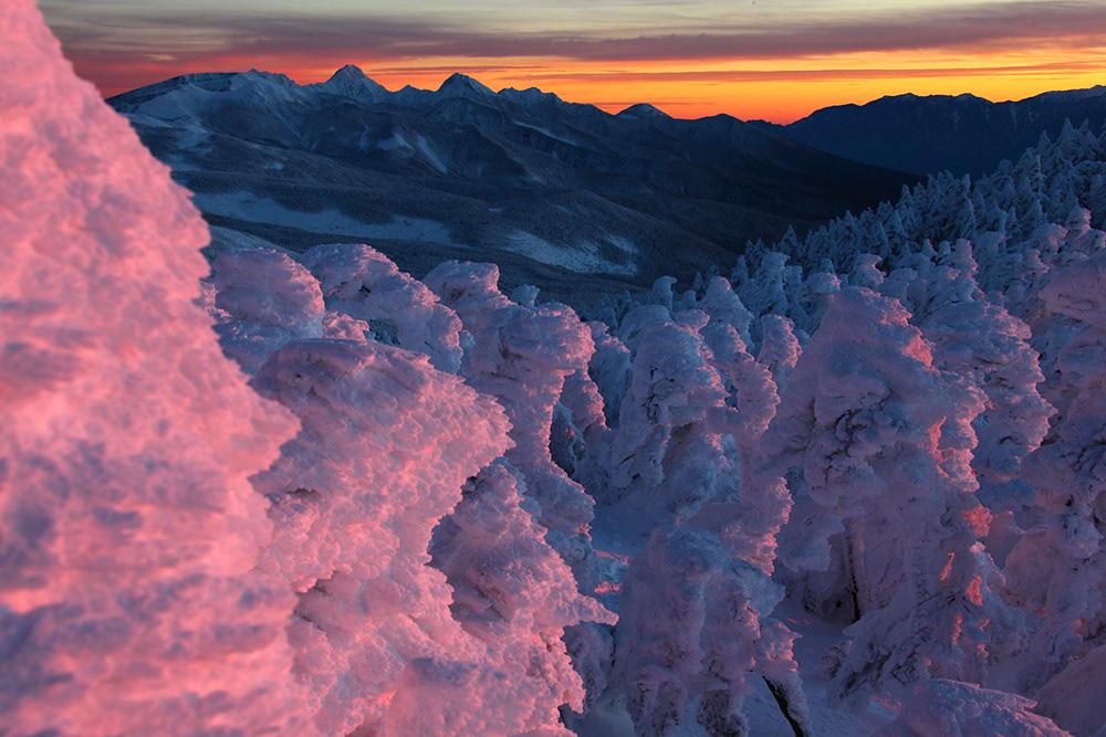 日没間際の樹氷林 Photo by Kenji Shimadate