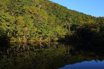 青葉の七ツ池(9月17日撮影) Photo by Kenji Shimadate