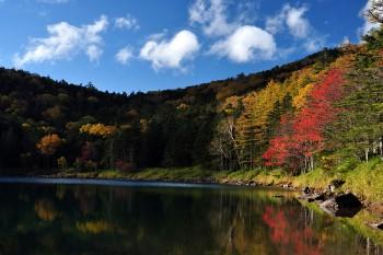 双子池・雌池(10月7日撮影) Photo by Kenji Shimadate