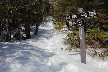 三ツ岳分岐付近の様子(4月22日撮影) Photo by Kenji Shimadate