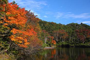 晴れの七ツ池(9月24日撮影) Photo by Kenji Shimadate