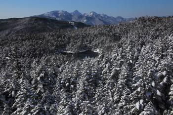 新雪の森と七ツ池と八ヶ岳(21日撮影) Photo by Kenji Shimadate