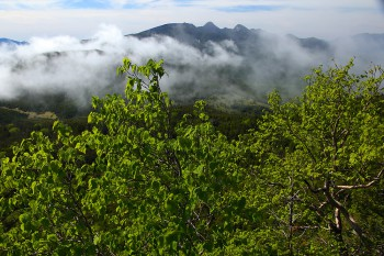 新緑と雲間の八ヶ岳 Photo by Kenji Shimadate
