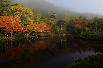 七ツ池 (9月22日撮影) Photo by Kenji Shimadate