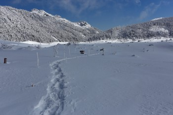 坪庭の北横岳分岐付近(4月2日撮影) Photo by Kenji Shimadate