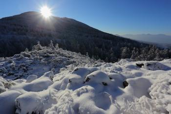 新雪の坪庭(12月15日撮影) Photo by Kenji Shimadate